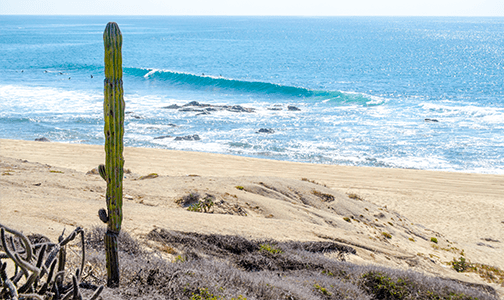 Surfing Cabo Shipwrecks Secret Surf Spot